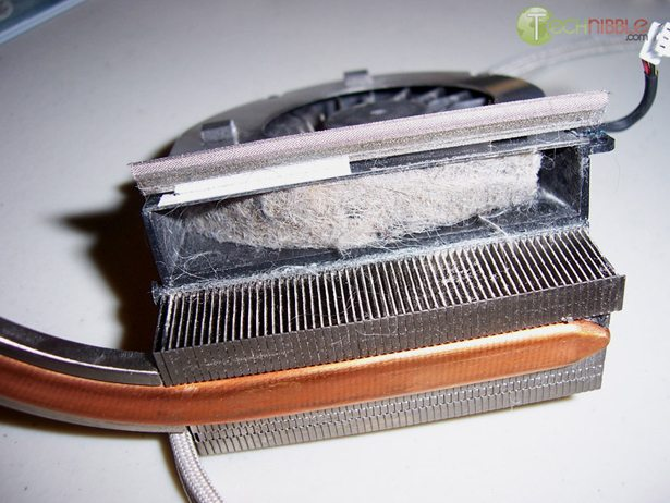 Dirty Computers: Pet Hair